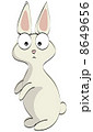まんまる目玉のウサギさん 8649656