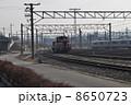 うめこうじじょうききかんしゃかん 梅小路蒸気機関車館 SLの写真 8650723