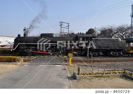 梅小路蒸気機関車館 8650729