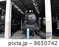 うめこうじじょうききかんしゃかん 梅小路蒸気機関車館 SLの写真 8650742