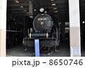 うめこうじじょうききかんしゃかん 梅小路蒸気機関車館 SLの写真 8650746