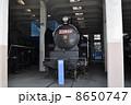 うめこうじじょうききかんしゃかん 梅小路蒸気機関車館 SLの写真 8650747