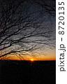 初日の出(鐘撞堂山/埼玉県 寄居町・深谷市) 8720135
