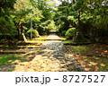参道 英彦山 英彦山神宮の写真 8727527