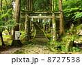 参道 英彦山 英彦山神社の写真 8727538