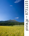 田園風景と高千穂の峰 8731155