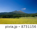 田園風景と高千穂の峰 8731156