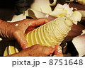 たけのこ 剥く 筍の写真 8751648