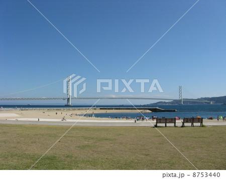 大蔵海岸海水浴場 8753440