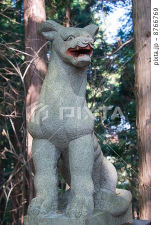 釜山神社 狼狛犬(埼玉県大里郡寄居町) 8766769