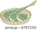 粽 柏餅 和菓子のイラスト 8767250