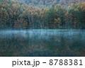 朝靄 朝もや 御射鹿池の写真 8788381