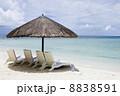 サイパンの砂浜 8838591