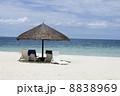 サイパンの砂浜 8838969