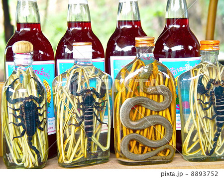 ヘビ酒・サソリ酒(ルアンパバーン近郊/ラオス) 8893752
