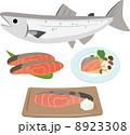 焼き魚 切り身 焼き鮭のイラスト 8923308