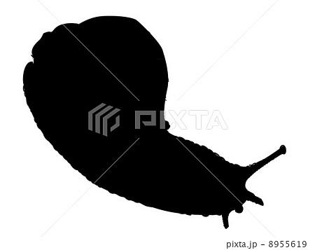 イラスト素材: 腹足類 らせん 螺旋のイラスト