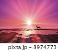 夜明け 日の出 馬のイラスト 8974773