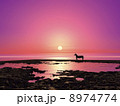 午 初日の出 日の出のイラスト 8974774