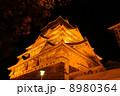 橙灯大阪城05 8980364