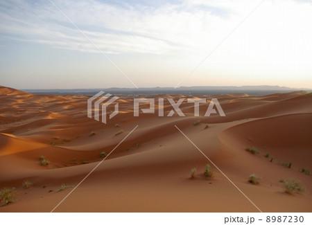 夕暮れのサハラ砂漠 8987230