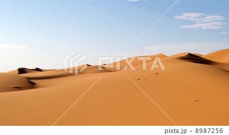 サハラ砂漠 8987256