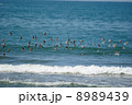渡り鳥の群れ 8989439