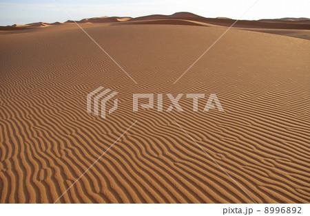 サハラ砂漠の風紋 8996892