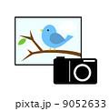 写真撮影 9052633