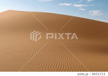 サハラ砂漠の風紋 9052723