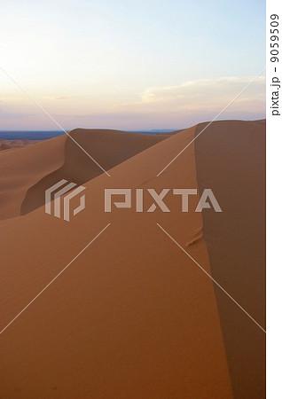 サハラ砂漠の砂丘 9059509
