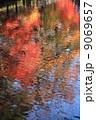 自然 水面の紅葉 9069657