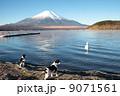 富士山と鳥と犬 9071561