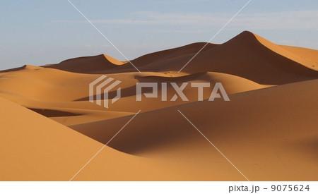サハラ砂漠 9075624