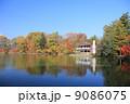 塩沢湖 自然 風景の写真 9086075