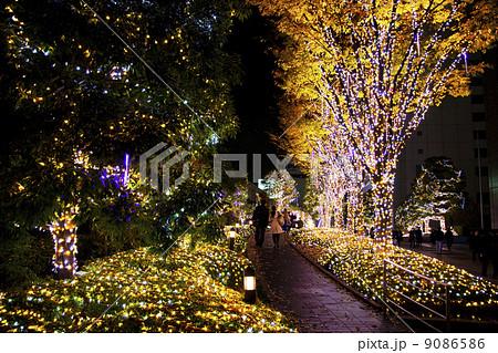 クリスマスイルミネーション  9086586