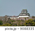 天守閣 和歌山城 城の写真 9088335