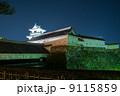 夜空に浮かぶ高知城天守閣 冬のお城祭り 9115859