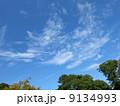 青空 雲 緑 9134993