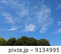 青空 雲 緑 9134995
