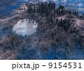 巨大な巣 9154531