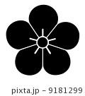 太宰府天満宮 梅の花 9181299