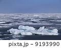 流氷 9193990