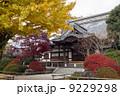 本堂 高円寺 寺の写真 9229298