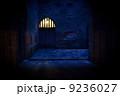 フランス・サルラ・中世風の街角の夜 9236027