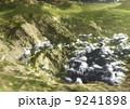 雲の巣 II 9241898