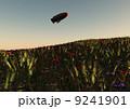 ポピーの丘 9241901