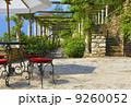 カフェテリア 緑 カフェの写真 9260052
