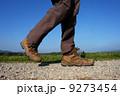 walking shoes 9273454