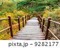 階段 散歩道 フットパスの写真 9282177